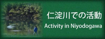 仁淀川での活動 Activity in Niyodogawa